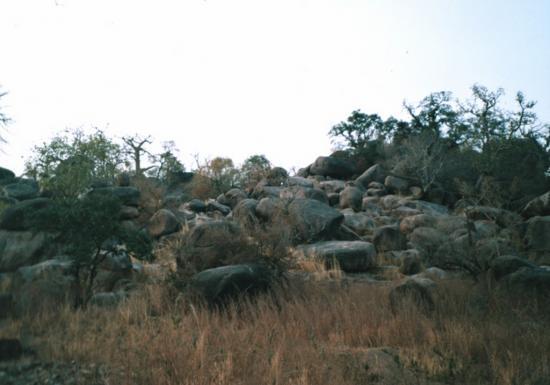 Pama - La colline 1