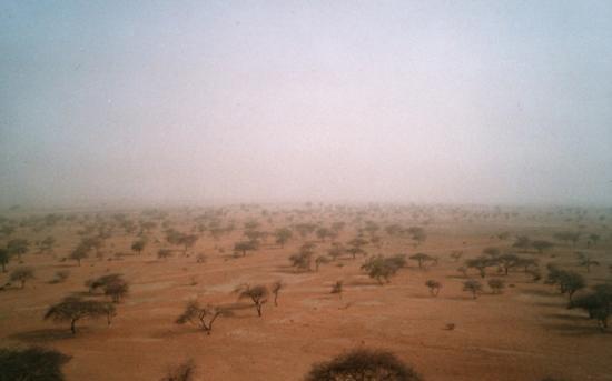 fGorom Gorom - L'armattan se lève aux portes du désert