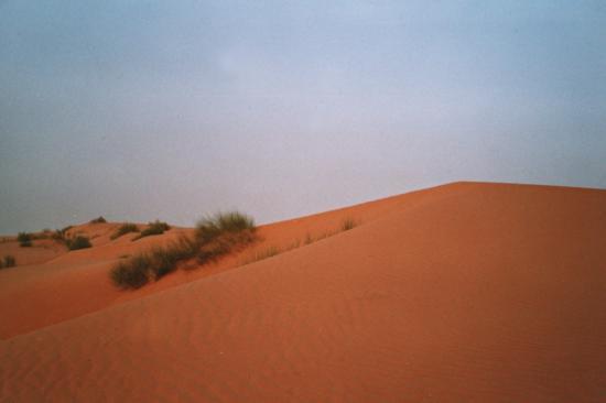 Oursi - Et le désert avance... 1ères dunes
